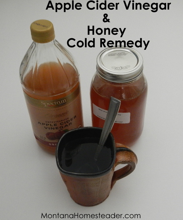apple cider vinegar and honey natural cold buster remedy cure for common cold