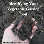Identifying Your Vegetable Garden Soil