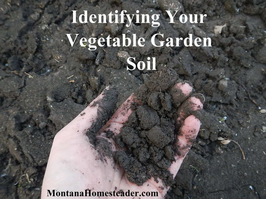 Identifying Your Vegetable Garden Soil @ Montana Homesteader