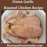 Onion Garlic Roasted Chicken Recipe
