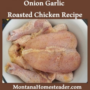 Onion garlic roasted chicken recipe- so delicious!