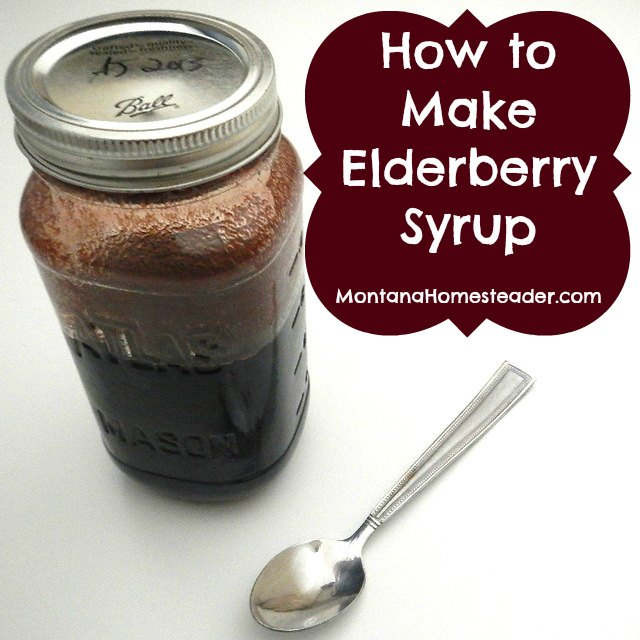 how to make homemade medicinal elderberry syrup |  Montana Homesteader