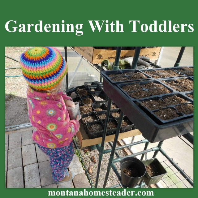 Gardening With Toddlers - tips on how to teach your toddler how to garden AND actually get some gardening done!