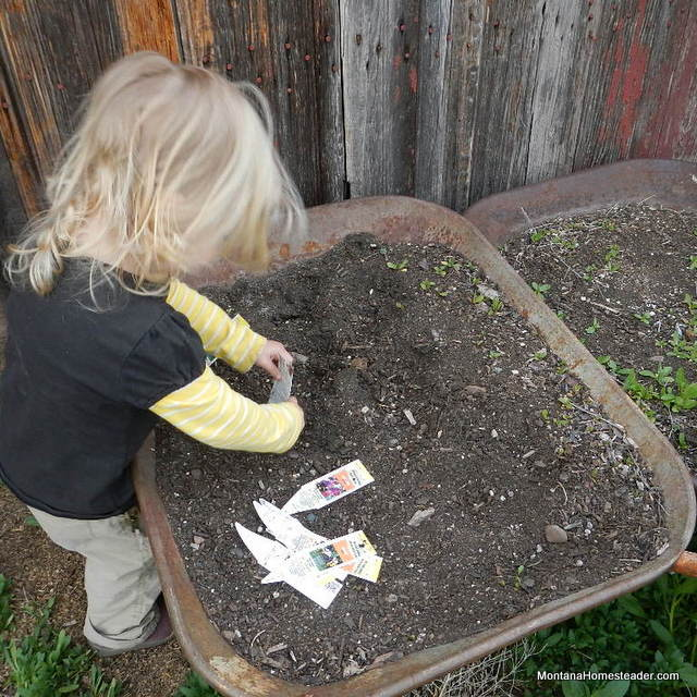 tips on how to garden with a toddler