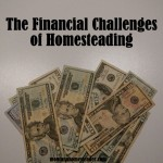 The Financial Challenges of Homesteading