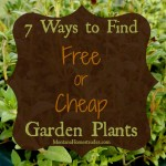 7 Ways to Find Free or Cheap Garden Plants