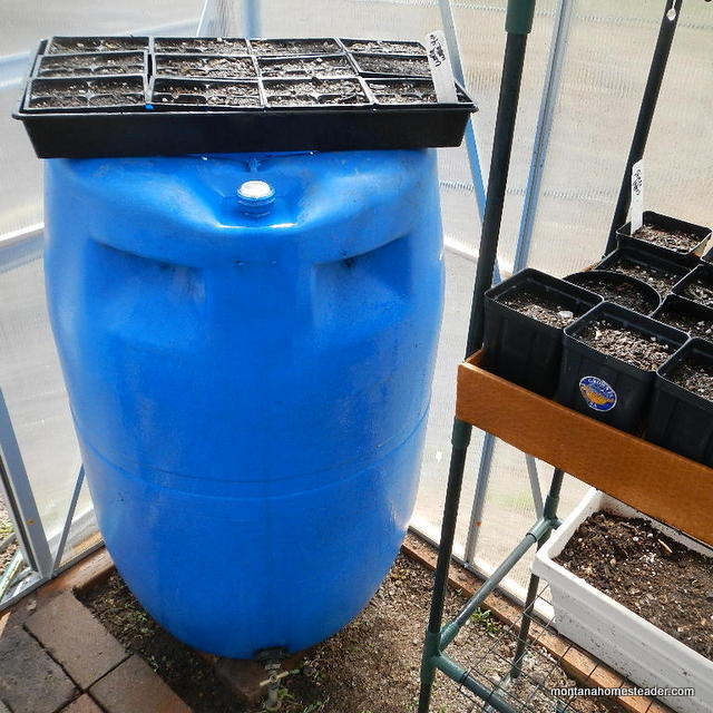 using passive heat with a water barrel to heat a greenhouse