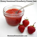 Honey Sweetened Strawberry Freezer Jam