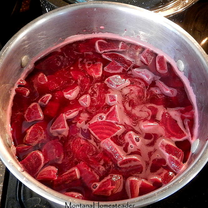 Tutorial on how to make and can homemade pickled beets Montana Homesteader