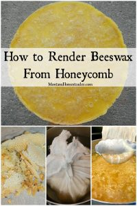How to render beeswax from honeycomb with picture of honeycomb being placed inside cheesecloth then placed in a pot of hot water to render into beeswax
