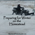 Preparing for Winter on the Homestead