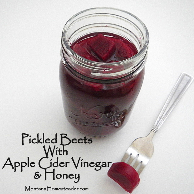How to make and can pickled beets with apple cider honey and vinegar Montana Homesteader