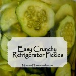 Easy Crunchy Refrigerator Pickles