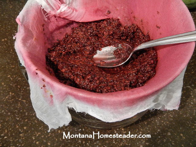 How to make elderberry juice for drinking or for elderberry syrup Montana Homesteader