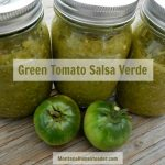 Green Tomato Salsa Verde Recipe