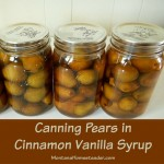 Canning Pears in Cinnamon Vanilla Syrup