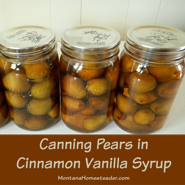 Canning pears in cinnamon vanilla syrup | Montana Homesteader