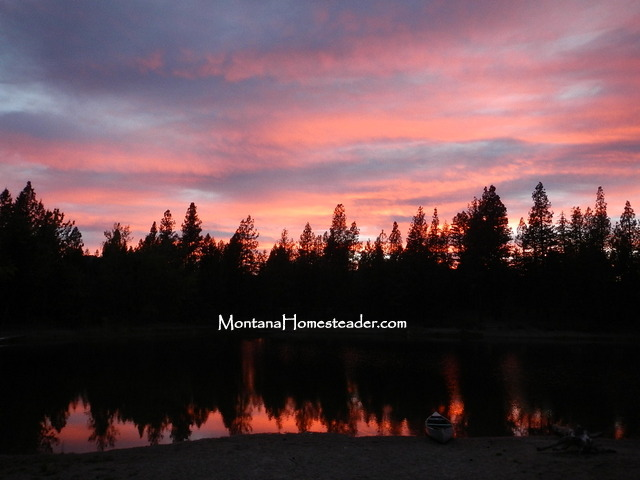 Fishing for wild trout in a mountain lake in Montana | Montana Homesteader