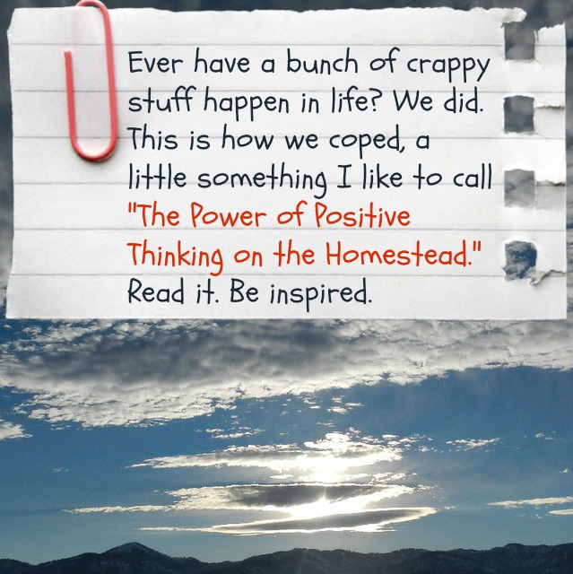 The power of positive thinking on the homestead and how we coped with a bunch of crappy stuff happening in life | Montana Homesteader