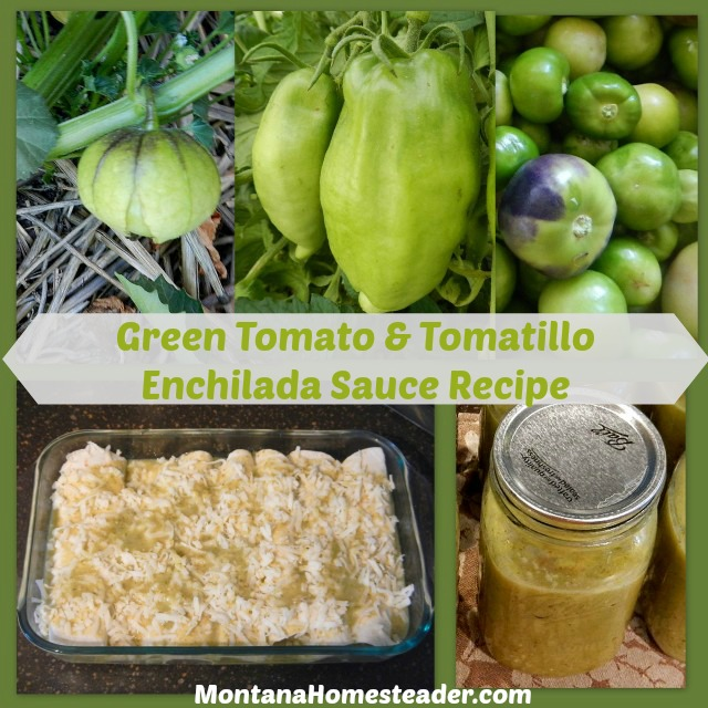 Green tomato and tomatillo verde enchilada sauce recipe | Montana Homesteader