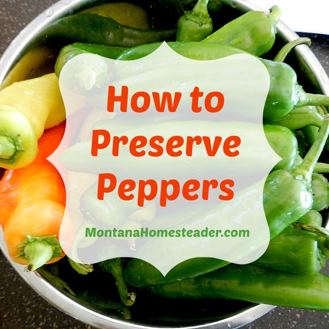 How to preserve peppers. This quick and easy method to preserve peppers will save you time and money throughout the year! | Montana Homesteader