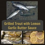 Grilled Trout with Lemon Garlic Butter Sauce