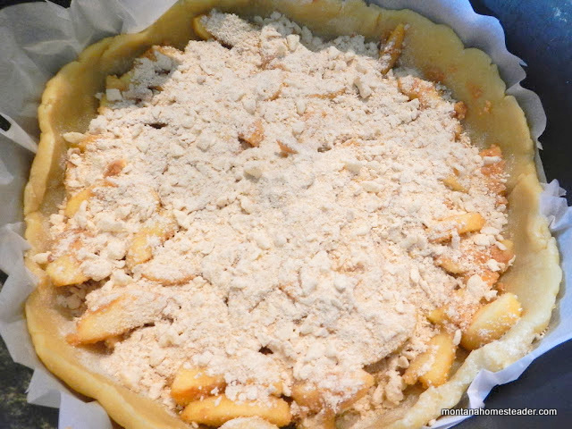 homemade apple pie baked in a dutch oven