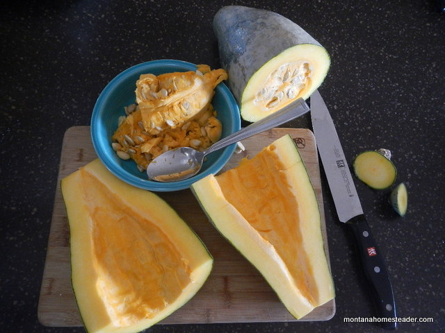 How to cook and prepare a winter squash | Montana Homesteader
