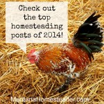 Top Homesteading Posts of 2014