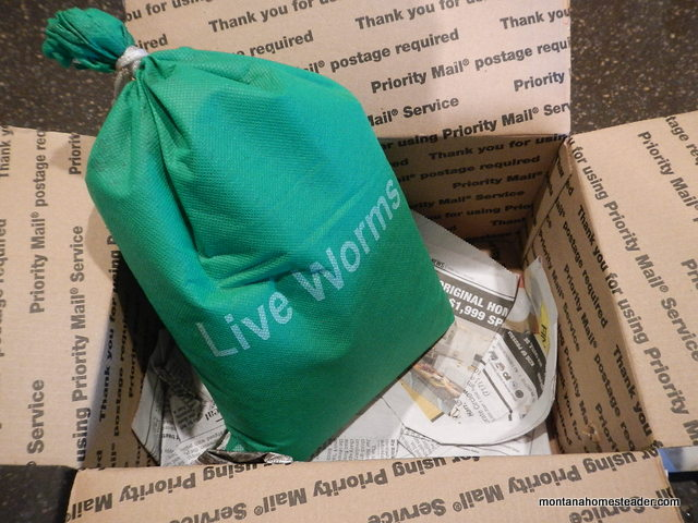 how live composting worms are shipped in the mail