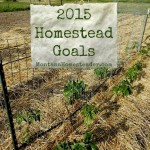 Homestead Goals for 2015