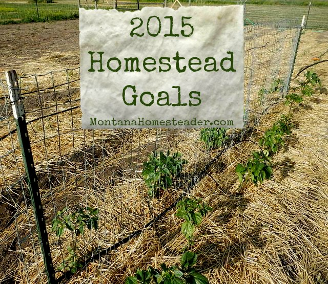 Homestead Goals for 2015 Montana Homesteader