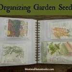 Organizing Garden Seeds