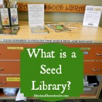 What is a seed library?