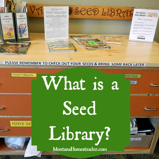 What is a seed library Montana Homesteader