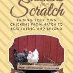 Chickens From Scratch Book  Giveaway