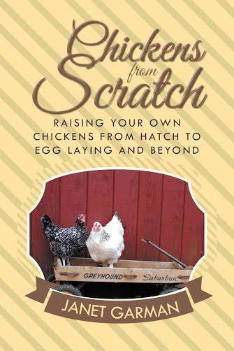 chickens from scratch book a must have guide for raising baby chicks | Montana Homesteader