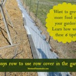 6 Ways Row Cover in a Garden will Help You Grow More Food