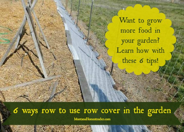 6 ways to use row cover in the garden to grow more food year round! | Montana Homesteader