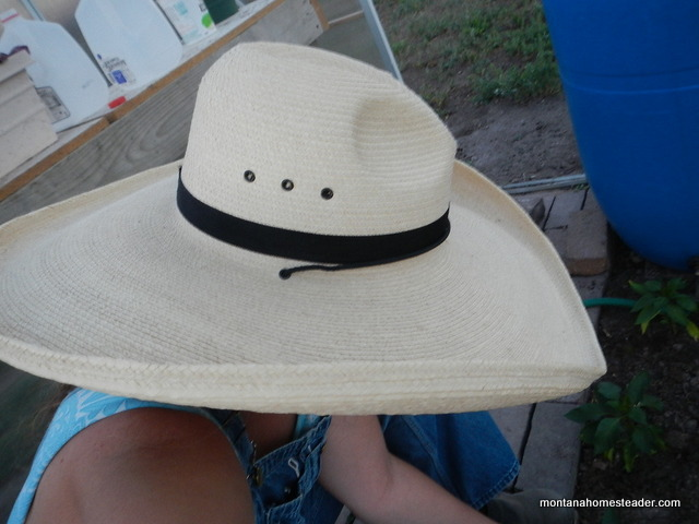 saving money by buying a second hand sun hat | Montana Homesteader