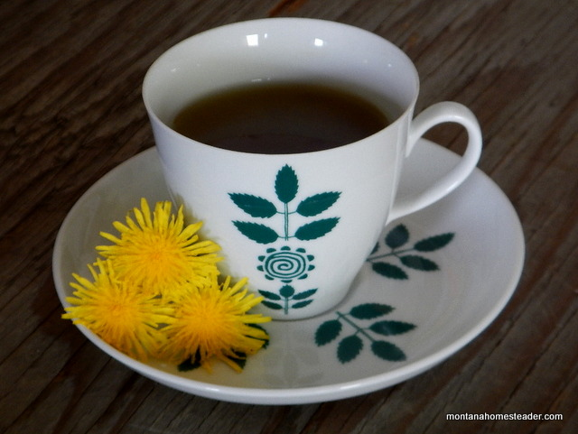 herbal dandelion tea with honey | Montana Homesteader