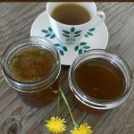 Dandelion tea, jelly and syrup