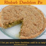 Rhubarb Dandelion Pie Recipe