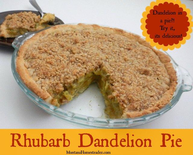 Rhubarb dandelion pie recipe. Dandelion in a pie?! Try it, its delicious! | Montana Homesteader