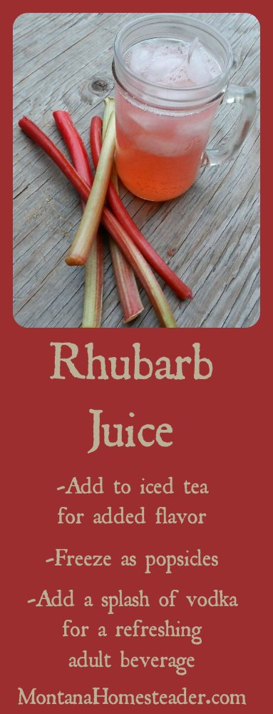 Rhubarb juice recipe and many ways to use it | Montana Homesteader