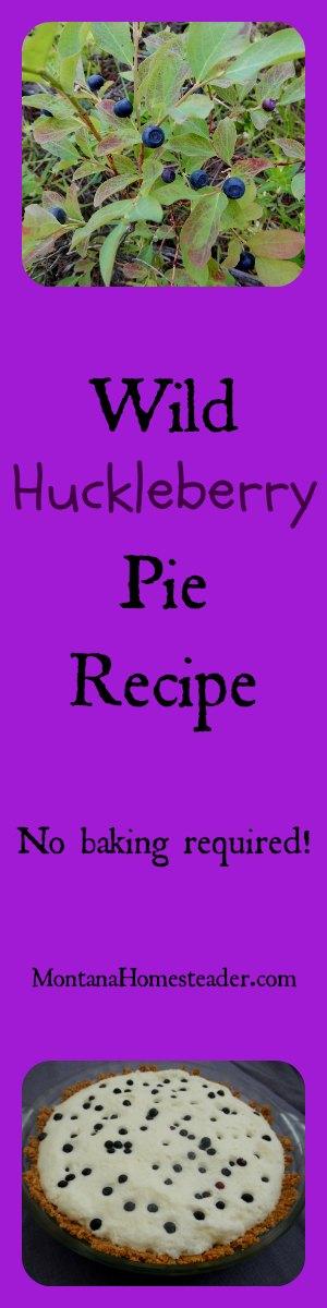 Wild huckleberry pie recipe | Montana Homesteader