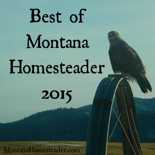 Best of Montana Homesteader blog posts 2015