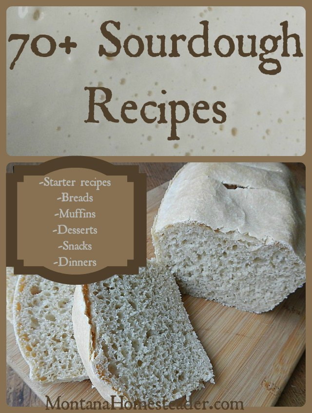 70+ Sourdough Recipes | Montana Homesteader