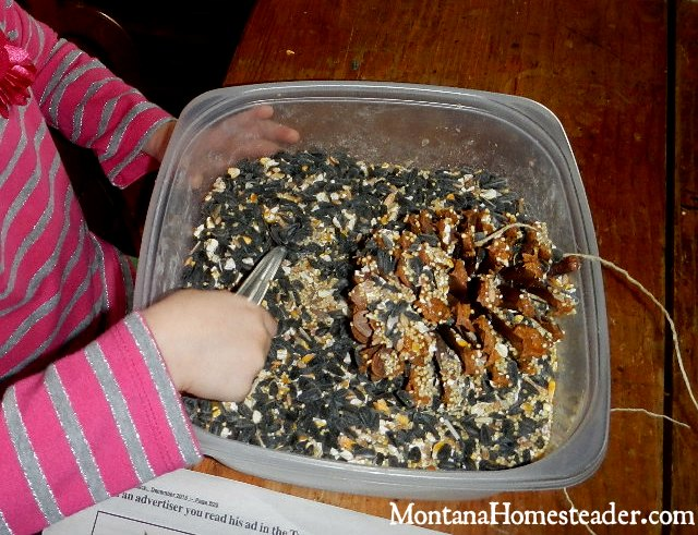 DIY project to make a peanut butter pine cone bird feeder | Montana Homesteader