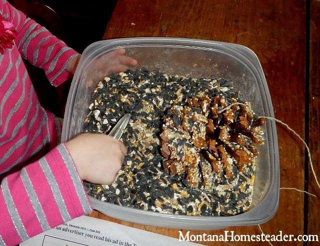 DIY project to make a peanut butter pine cone bird feeder | Montana Homesteader